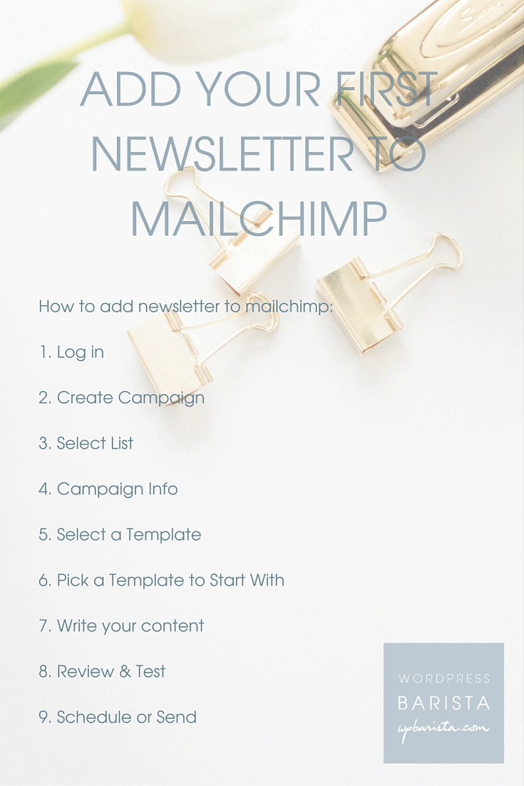 Add your first newsletter to mailchimp wpbarista for Mailchimp create template from campaign