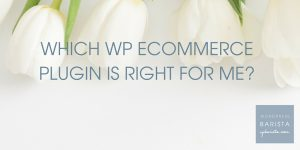 Which website e-commerce plugin is right for me?