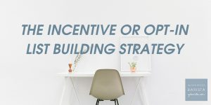 The Incentive or Opt-in List Building Strategy