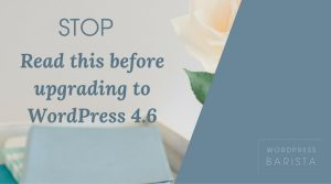 STOP! Please Read Before Updating to WordPress 4.6
