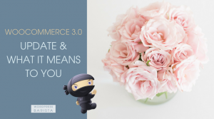 WooCommerce 3.0 Update & What it means to you