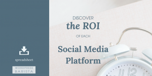 Easy to use Spreadsheet for Calculating ROI in Social Media