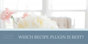 Which Recipe Plugin Is Best?